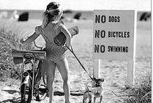 Bicycle Girl ♡