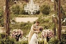 Weddings / by Tenya Du