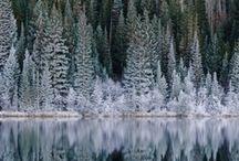 let it snow / by Linda Carl