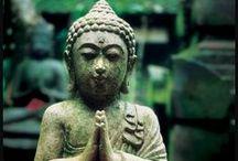 Buddha Et cetera / by Julie-Audrey Beaudoin