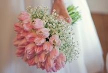 Wedding Bouquet|ウエディングブーケ / ウエディング・ブーケのイメージ