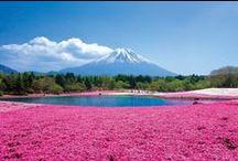Japan|日本の絶景 / 日本の絶景
