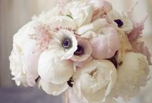 Les Fleurs: Bouquets