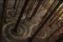 Spirals / by Laura E.
