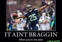 Seahawks 12th WOMan ~ Love my team!!
