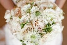 Bridal Inspiration - Ivory Wedding / by Miss Ruby