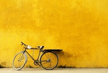 Bicycles I Love