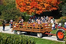 Things to do - October 2012