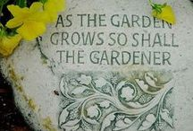 Garden Loveliness / by K. Simmons