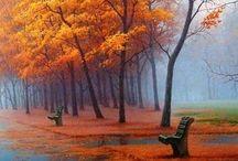Everything Autumn / My Favorite Season :) / by Elena Pettigrew