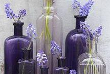 Bottles Repurposed / by Margaret Penney