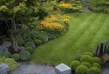 Outdoor Spaces / Outdoor spaces especially for small yards; small landscape design ideas. / by Von DeVore