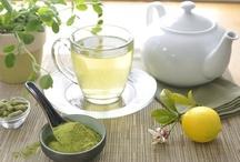 Moringa Food/Cooking/Recipes