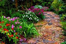 Inspirational Landscapes / Beautiful and Inviting Gardens and Landscapes / by Wight's Home and Garden