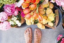 flowers  / by Mimi Gilliland Bighearted Blog