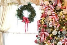 *Everyday Christmas: Trees / O Christmas Tree! / by The Everyday Home