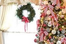 Christmas: Trees / O Christmas Tree!