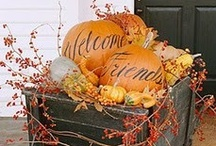 Fall Decorating / The most wonderful time of the year. / by Vicky Bell