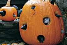 *Everyday Seasons:Halloween  / Ideas So Good They Are Spooky! / by The Everyday Home