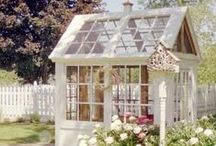 Garden: Sheds & Coops / Pampering Your Chickens in Style! / by The Everyday Home