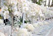 wedding  / by ปัญจะ ศิระโรจน์