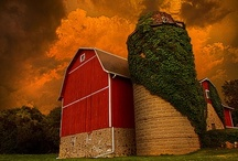 Barns and Silos / Farms are a art and beauty all their own. / by Vicky Bell