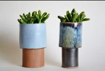 Plants&Pottery