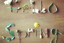 Spring Sensations / Springtime inspirations, seasonal, fashion, food, decor, crafts, and gifts