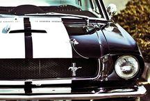 1967 Mustang / Mustang 1967 ideas / by Amber Guzman