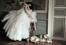 Tulle And Ruffles