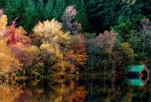 Autumn  / by Stéphanie Casey