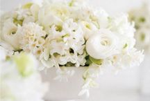 styling   flowers / by AnnaH.