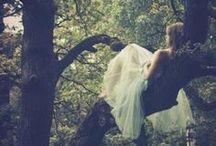 Wedding / by Beth Cathcart