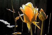 Flowers / by Rosemarie Scott