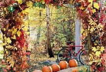 Fall/Thanksgiving / by Barbara Bealer