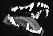 c r e a t u r e / animal / marine life / fierce creatures / by Brian Woodlief