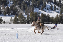 Ski Joring / Ski Joring is where a skiier is pulled by a horse through a course of jumps and gates. Fastest time wins! The 320 Ranch holds annual races  - free for spectators and always a great time!