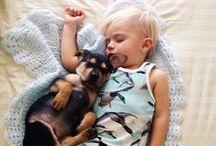 Pets | Friends for Life / A better life with unconditional love... | Ev hayvanları / Karışılıksız sevgi ile paylaşılan daha güzel bir hayat |  ADOPT, DON'T SHOP! Satın almayın, sahiplenin!