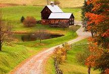 Seasonably Dressed: Fall