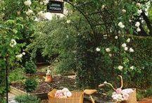 Garden-Lush beautiful green