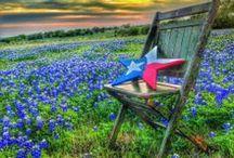 I Love Texas / by Vicki Palmer