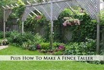 garden ideas / by Rayanna Wojahn DeFord