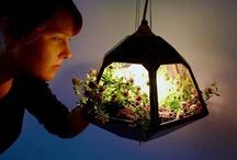"""Ideias para ter a natureza em casa / Buscando levar mais """"verde"""" e ar fresco para a vida entre quatro paredes nas grandes cidades, designers propõem soluções ecológicas inusitadas: http://abr.io/5Btd"""