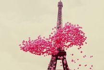 Paris / by Kelly Elizabeth