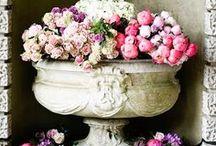 Beautiful Urns, Pots, & Bottles