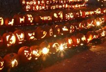 Halloween / by Kelly Elizabeth