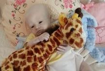 """My Reborns / These are my personal collection of reborns.  They are not for sale.  They are my babies that I love a lot.  I will post photos often on any new outfits, poses. and when I finally get around to """"doctoring up,"""" the sick ones.  More on that later."""