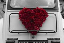 Be My ValentinE...II