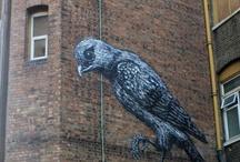 Put a Bird on It!!! / by Alexa Hackett
