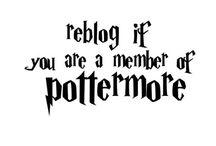 S Harry Potter